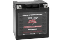Black Friday Sale - Twin Power High Performance AGM Battery - TPWM732GH