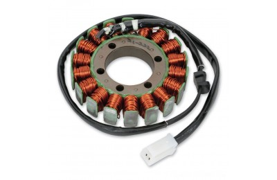 Black Friday Sale - Rick's Motorsport Electrics, Inc. Stator - 21-222