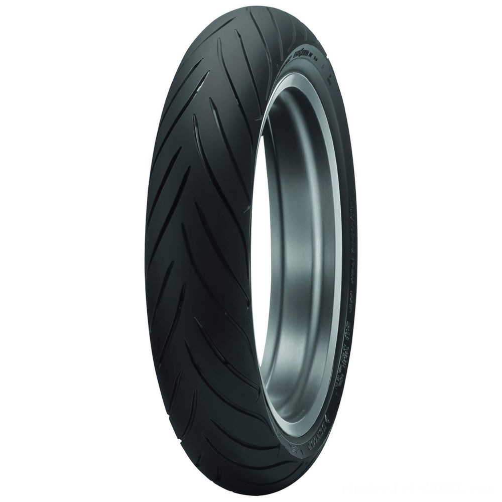 Black Friday Sale - Dunlop Roadsmart II 120/70ZR17 Front Tire - 45173919