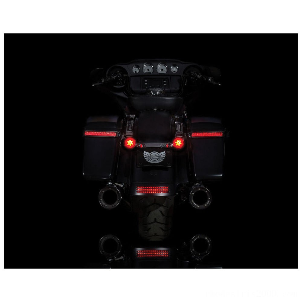 Black Friday Sale - Custom Dynamics ProBEAM Red/Red Ringz with Red Lens - PB-RR-1157